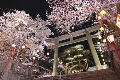鬼怒川温泉夜桜大宴会2020写真